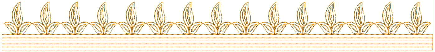 Beautiful leaf concept Lace / Border Embroidery Design